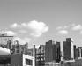Boston Skyline B&W