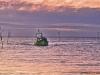 Returning Fisherman