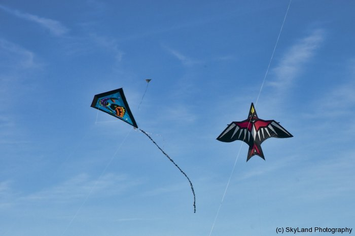 Two Soaring