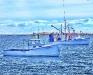 Cape Porpoise 2
