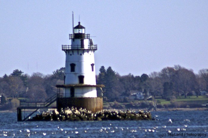 Conimicut Point Light