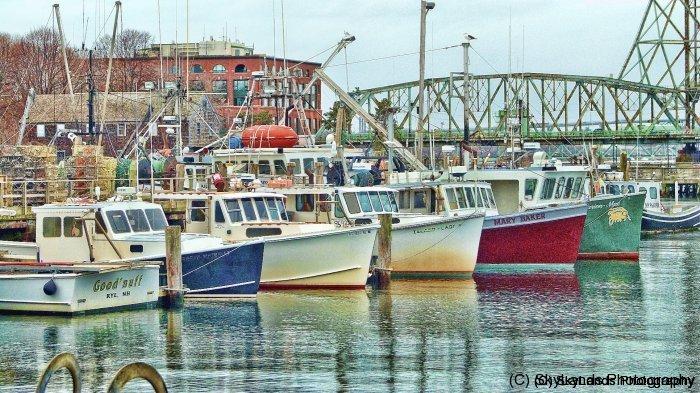 Fishing Pier with Memorial Bridge