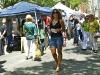 Arts Festival Walker