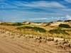 Dunes Road Back