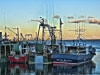 Situate Harbor