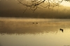 Sneach Pond Sunrise