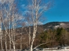 View at Crawford Notch
