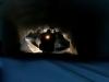 Tunnel Run