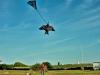 Judy launching her kite